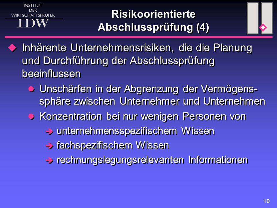 Risikoorientierte Abschlussprüfung (4)