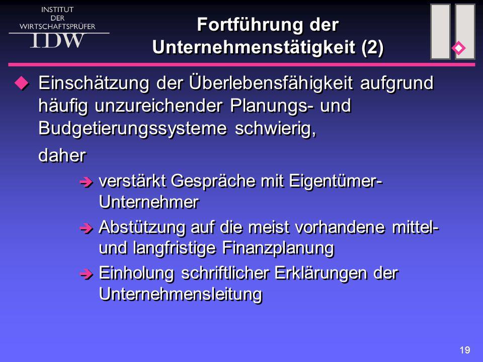 Fortführung der Unternehmenstätigkeit (2)