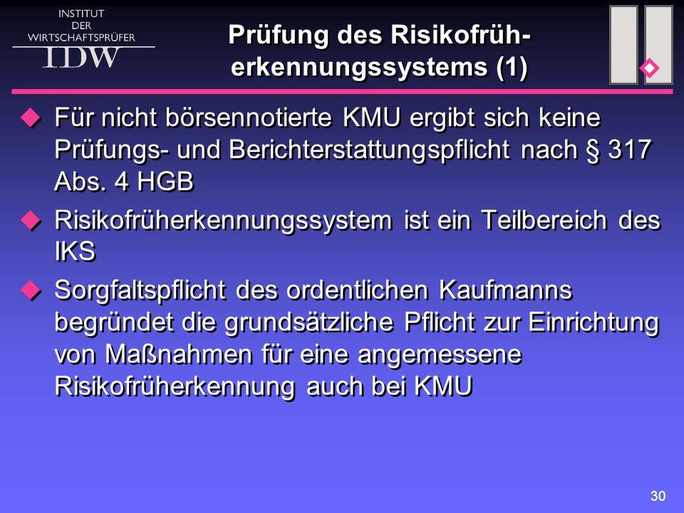 Prüfung des Risikofrüh-erkennungssystems (1)