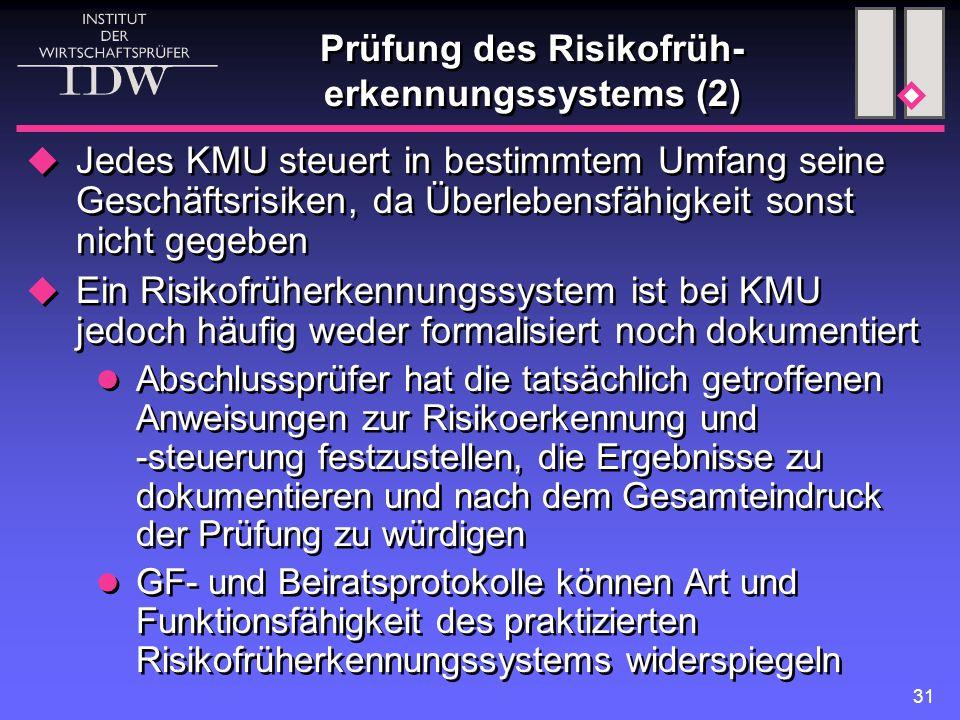 Prüfung des Risikofrüh-erkennungssystems (2)