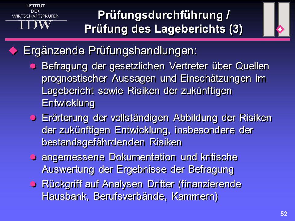 Prüfungsdurchführung / Prüfung des Lageberichts (3)