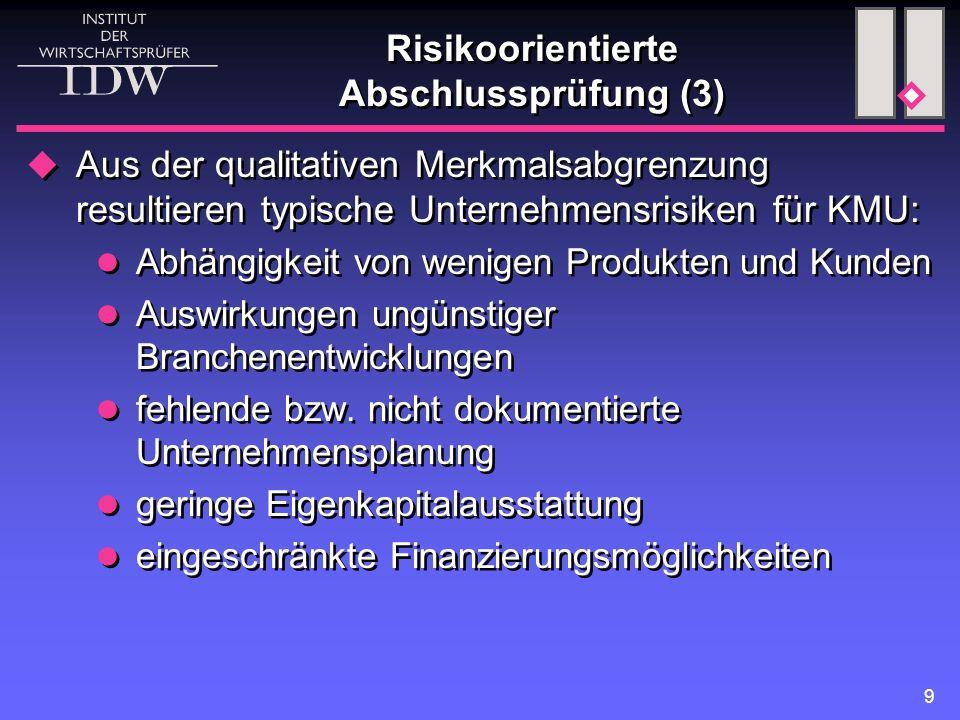 Risikoorientierte Abschlussprüfung (3)