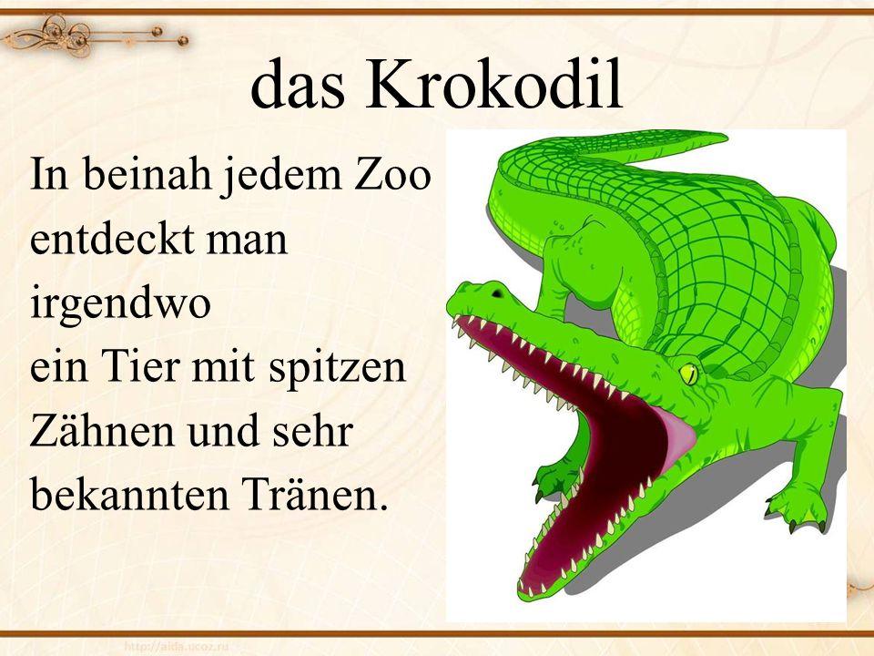 das Krokodil In beinah jedem Zoo entdeckt man irgendwo