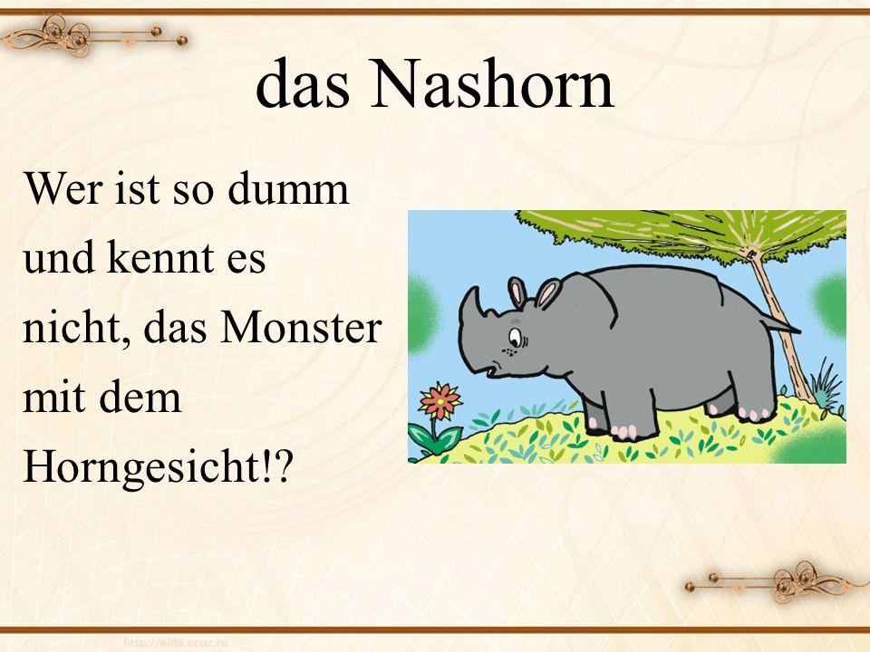 das Nashorn Wer ist so dumm und kennt es nicht, das Monster mit dem