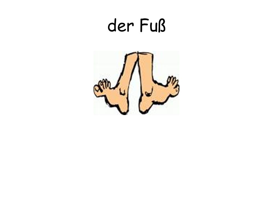 der Fuß