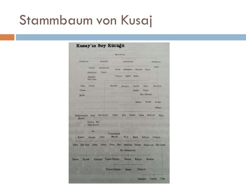 Stammbaum von Kusaj