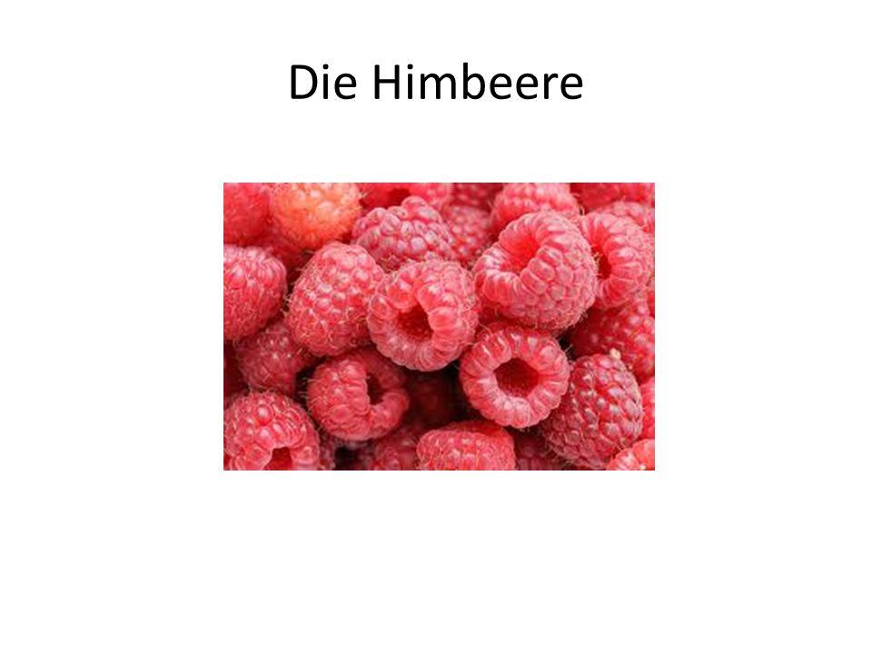 Die Himbeere
