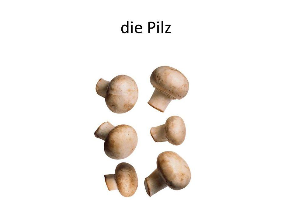 die Pilz