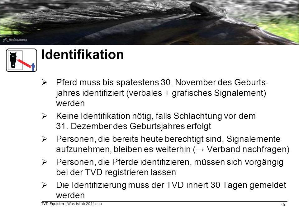 Identifikation Pferd muss bis spätestens 30. November des Geburts-jahres identifiziert (verbales + grafisches Signalement) werden.
