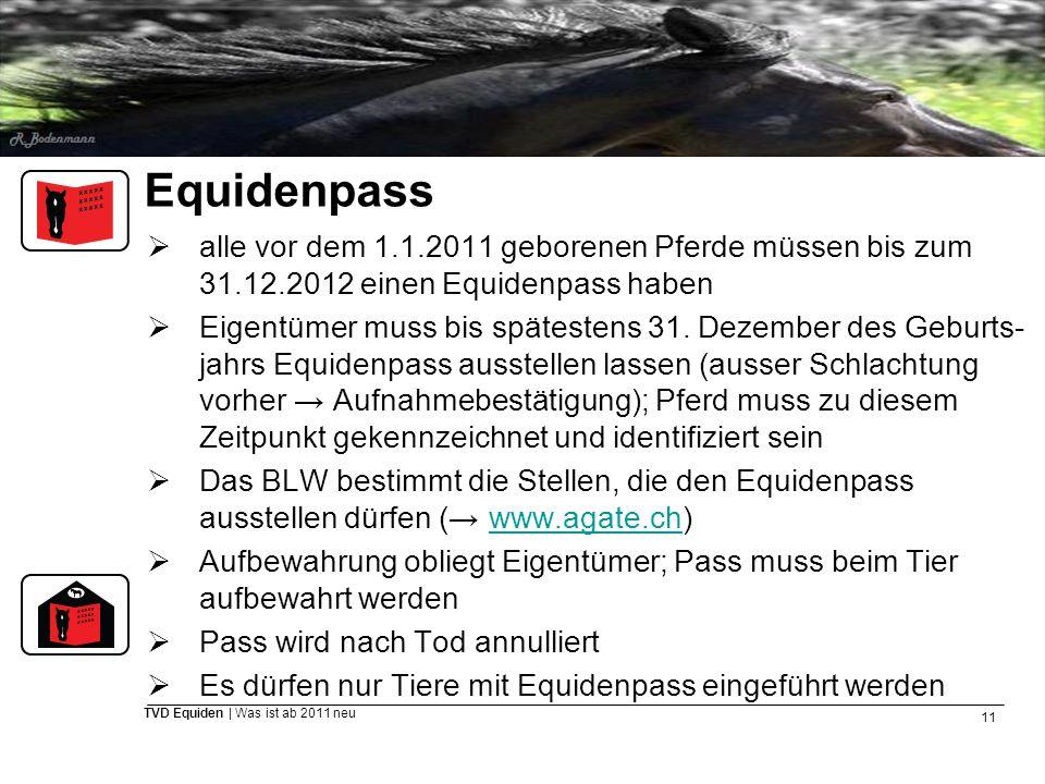 Equidenpass alle vor dem 1.1.2011 geborenen Pferde müssen bis zum 31.12.2012 einen Equidenpass haben.