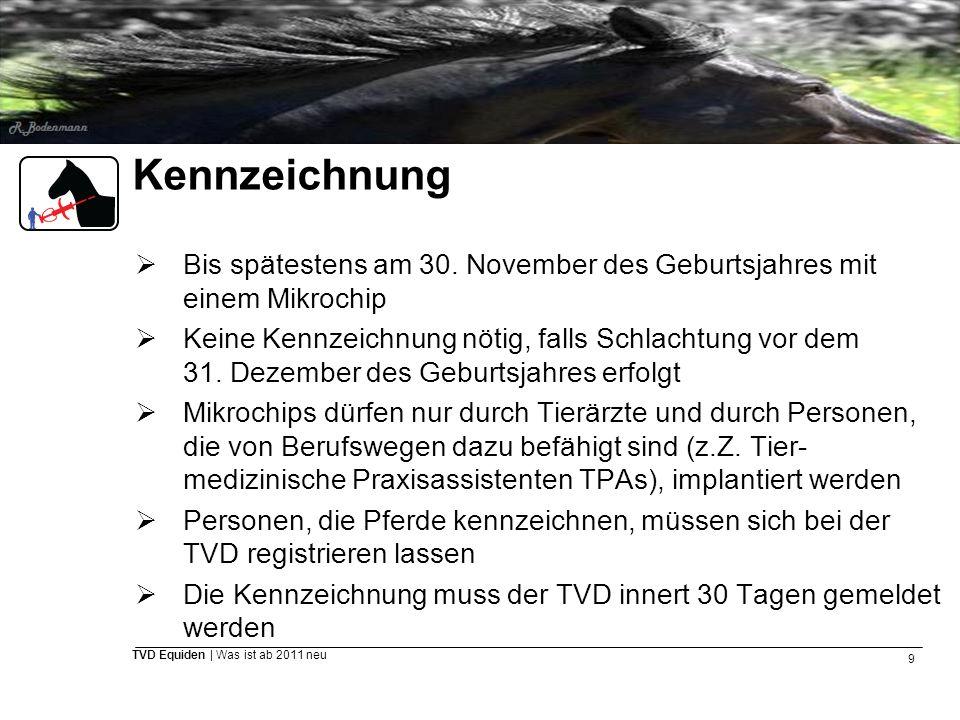 Kennzeichnung Bis spätestens am 30. November des Geburtsjahres mit einem Mikrochip.