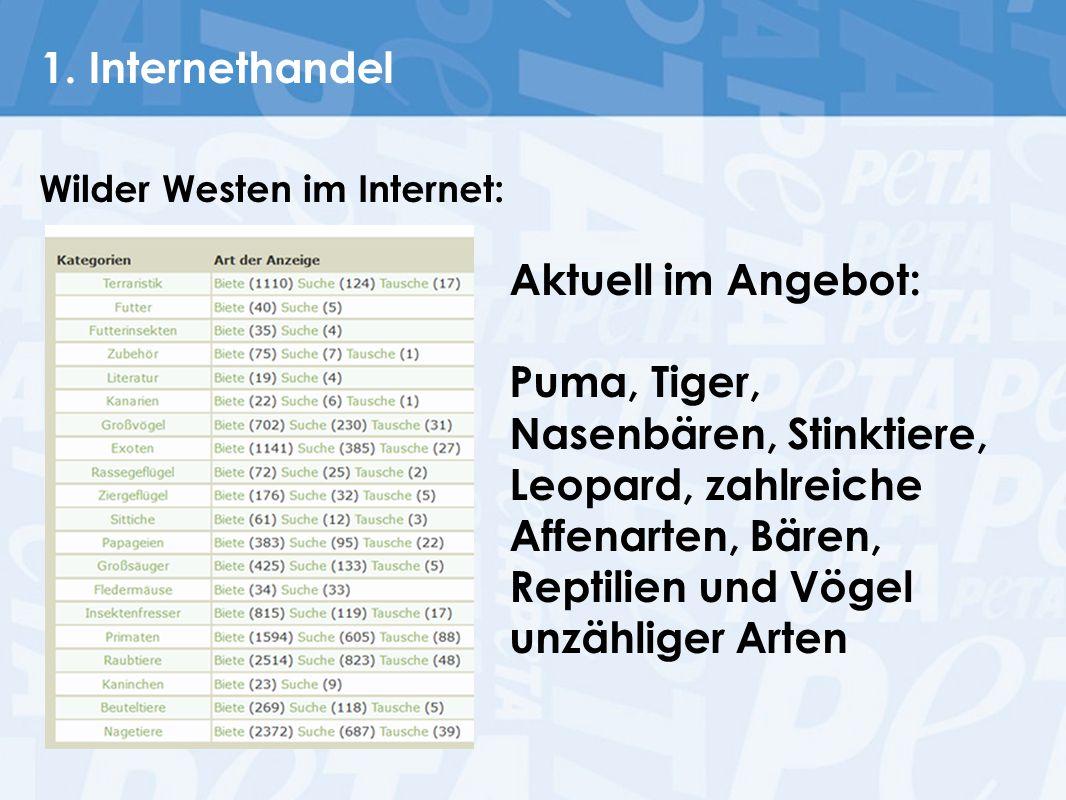 1. Internethandel Aktuell im Angebot: