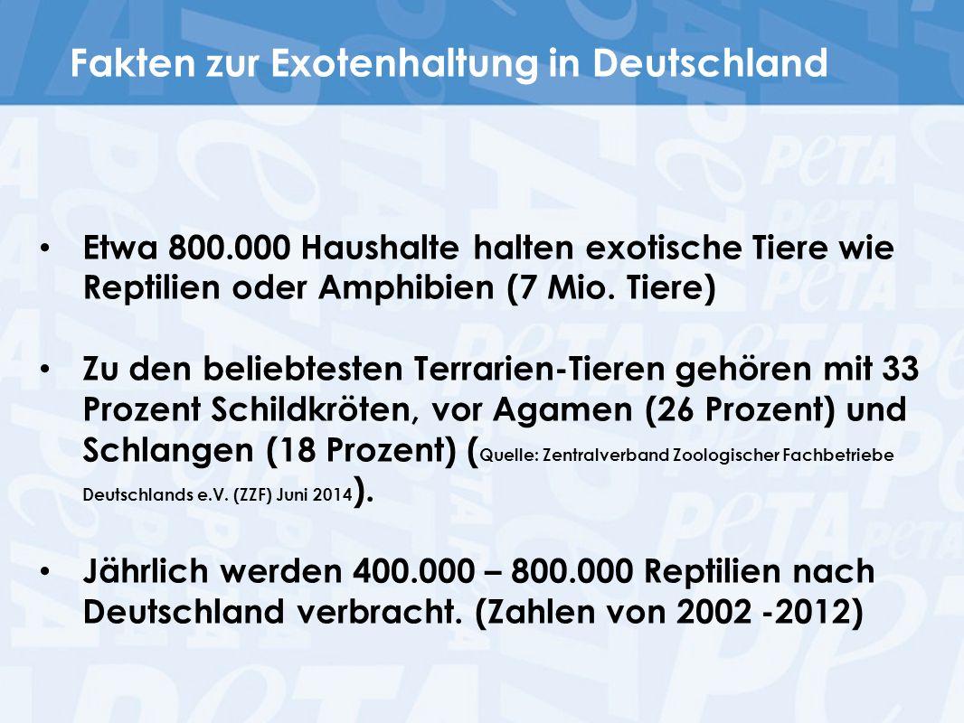 Fakten zur Exotenhaltung in Deutschland