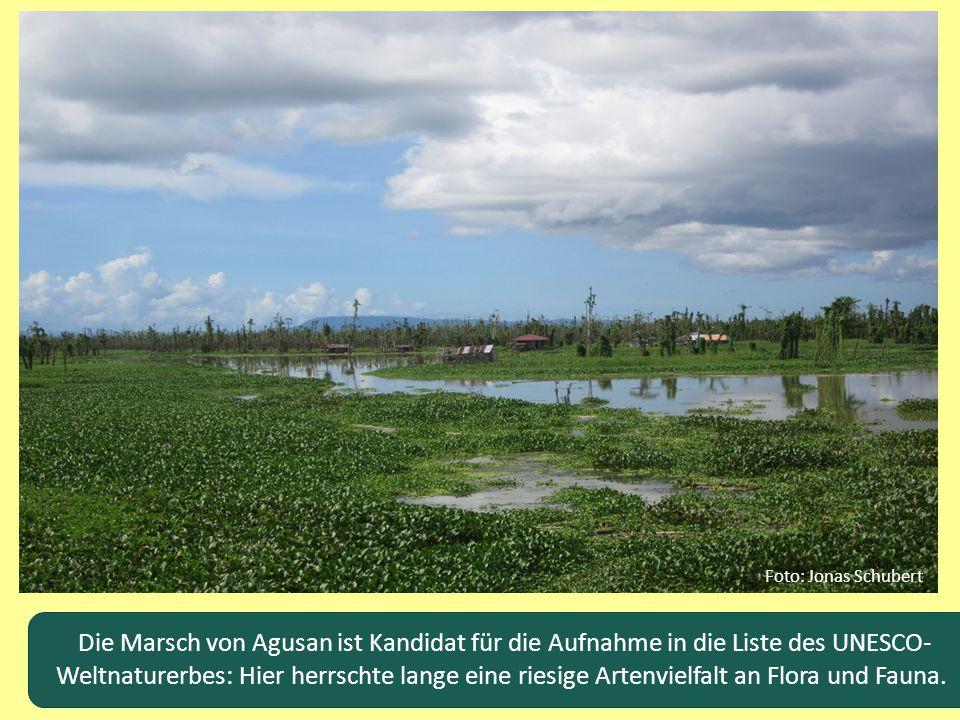 Foto: Jonas Schubert Die Marsch von Agusan ist Kandidat für die Aufnahme in die Liste des UNESCO-