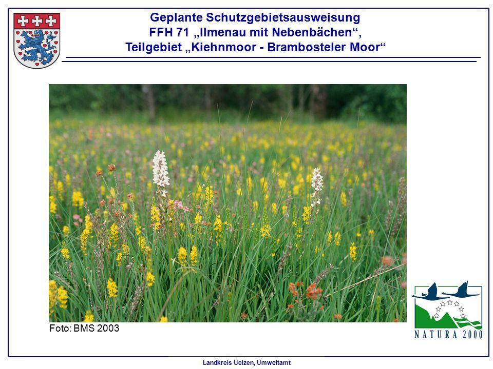 """Geplante Schutzgebietsausweisung FFH 71 """"Ilmenau mit Nebenbächen ,"""