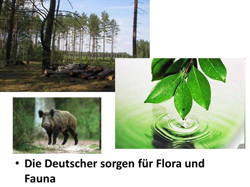 Die Deutscher sorgen für Flora und Fauna