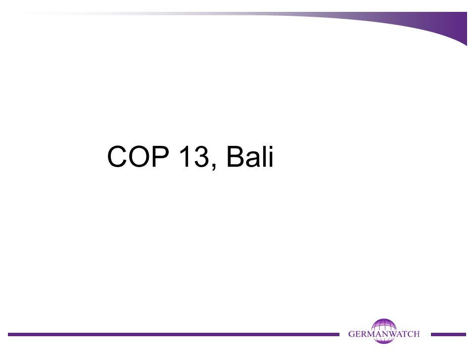 COP 13, Bali