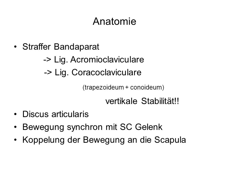 (trapezoideum + conoideum) vertikale Stabilität!!