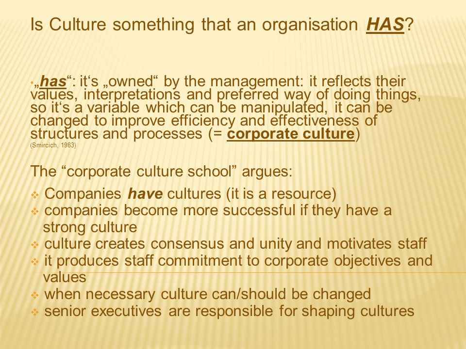 Is Culture something that an organisation HAS
