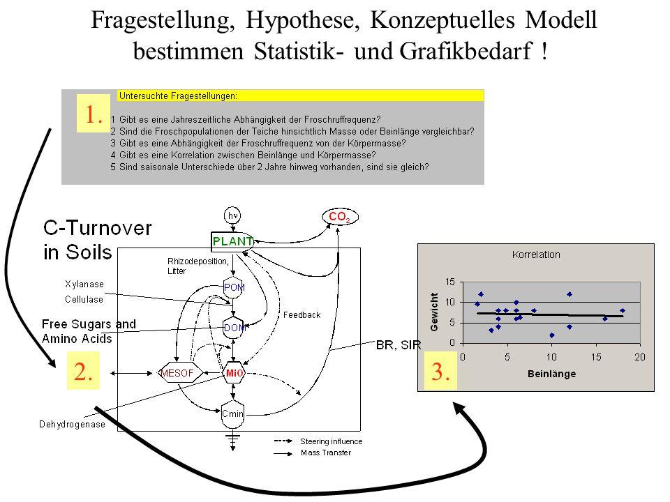 Fragestellung, Hypothese, Konzeptuelles Modell