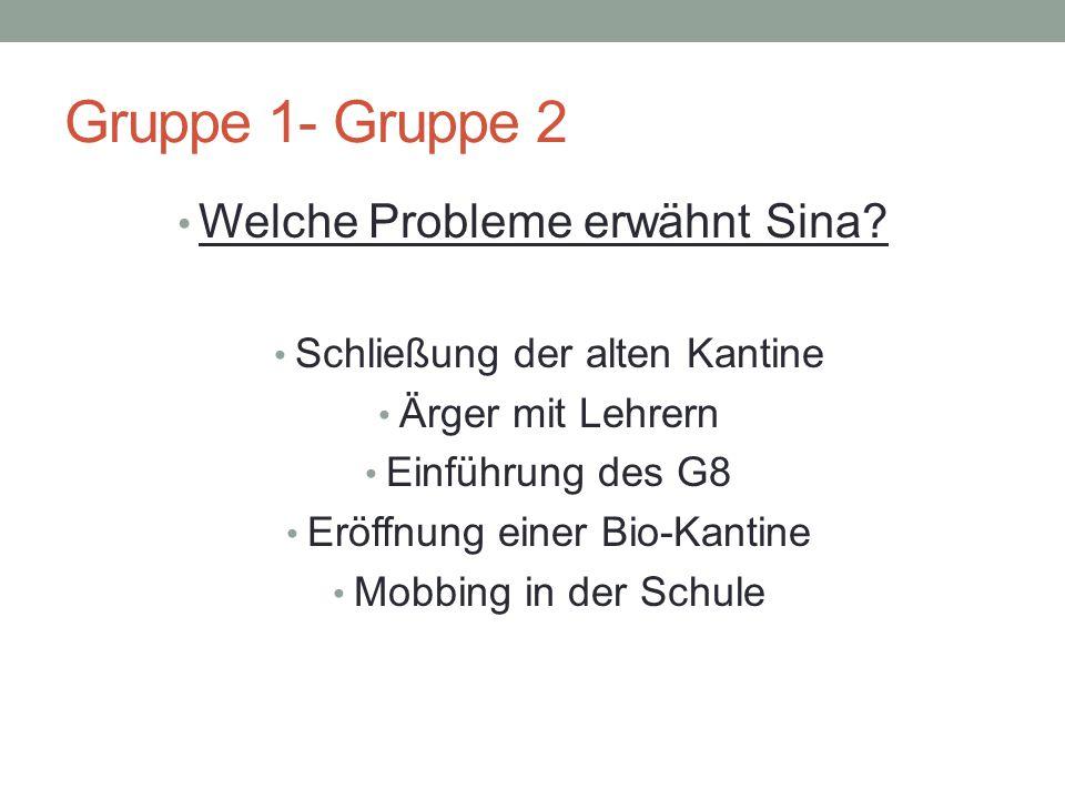 Gruppe 1- Gruppe 2 Welche Probleme erwähnt Sina