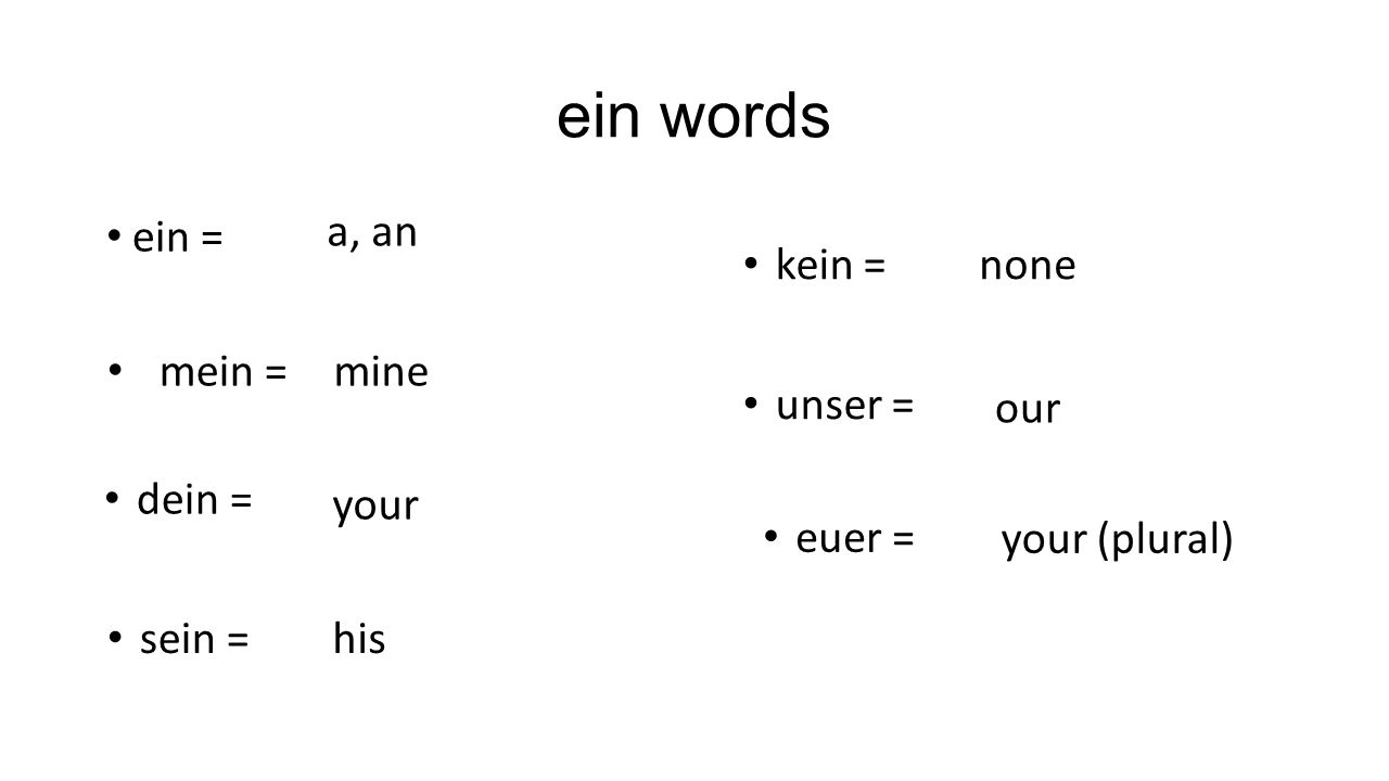ein words a, an ein = kein = none mein = mine unser = our dein = your