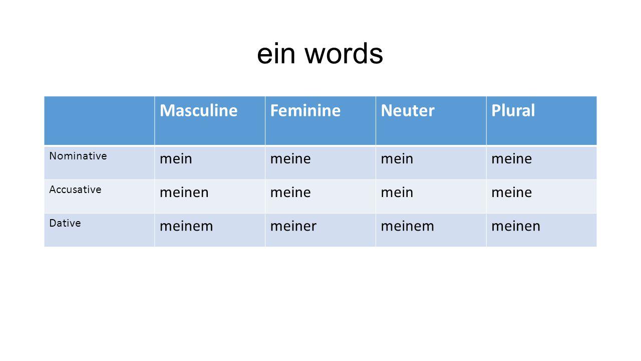 ein words Masculine Feminine Neuter Plural mein meine meinen meinem