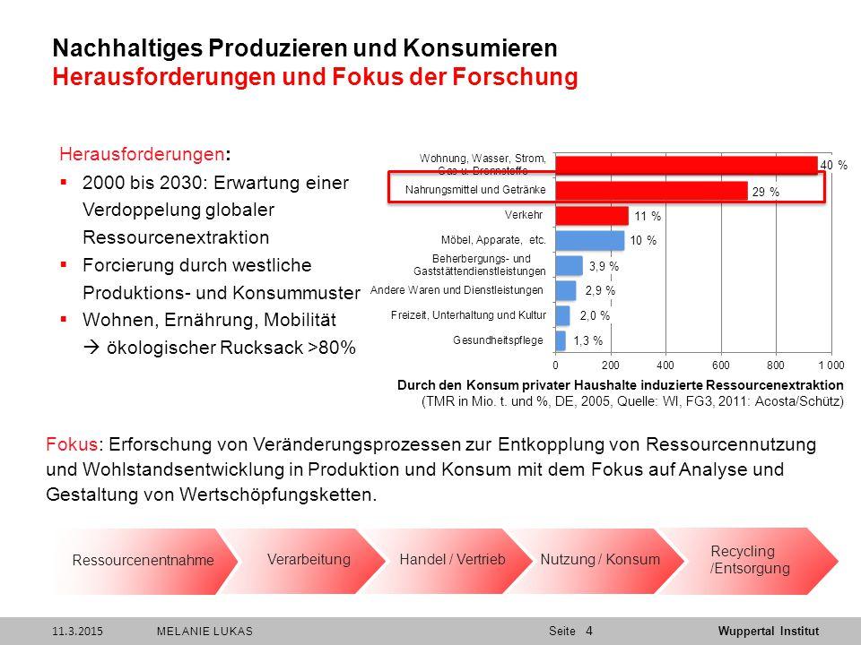 Nachhaltiges Produzieren und Konsumieren Herausforderungen und Fokus der Forschung