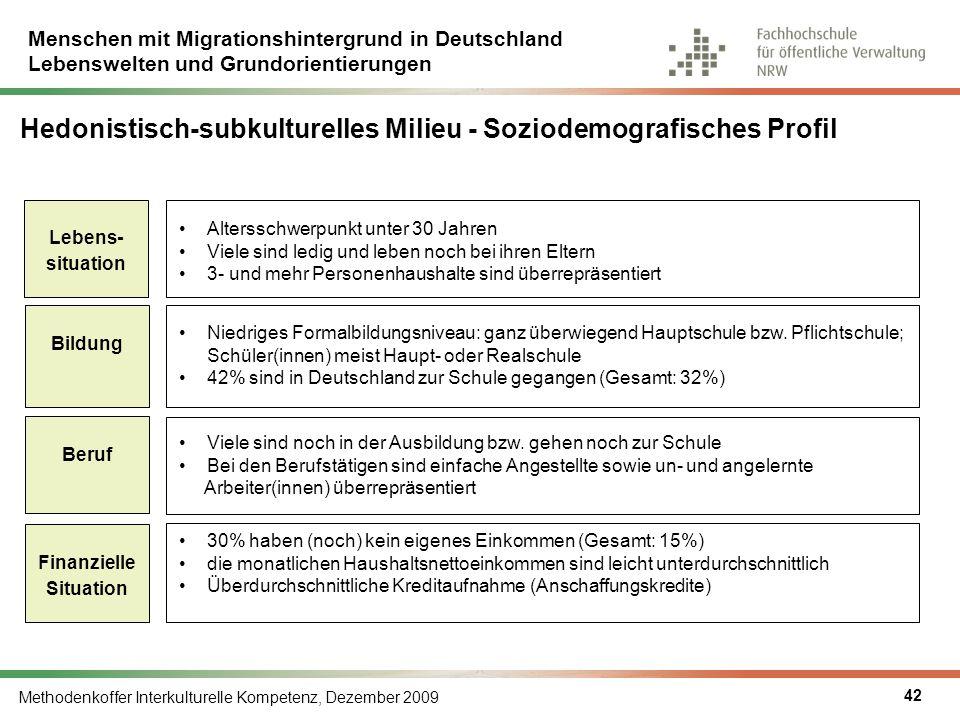 Hedonistisch-subkulturelles Milieu - Soziodemografisches Profil