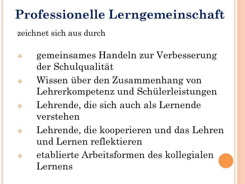 Professionelle Lerngemeinschaft