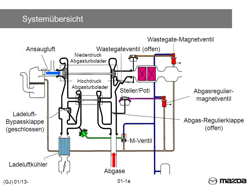 Systemübersicht Wastegate-Magnetventil Ansaugluft