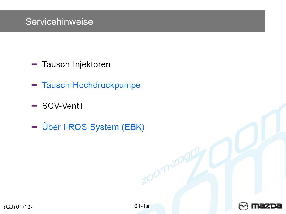 Servicehinweise Tausch-Injektoren Tausch-Hochdruckpumpe SCV-Ventil