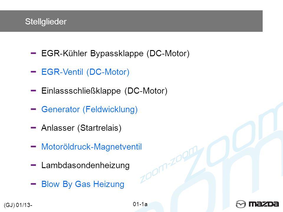 EGR-Kühler Bypassklappe (DC-Motor) EGR-Ventil (DC-Motor)