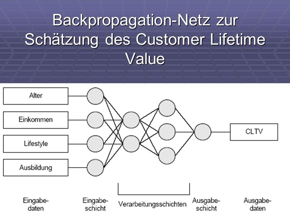 Backpropagation-Netz zur Schätzung des Customer Lifetime Value