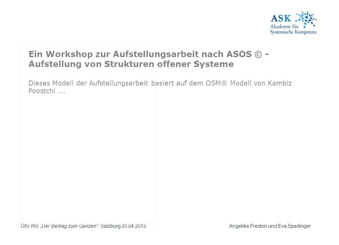 Ein Workshop zur Aufstellungsarbeit nach ASOS © - Aufstellung von Strukturen offener Systeme