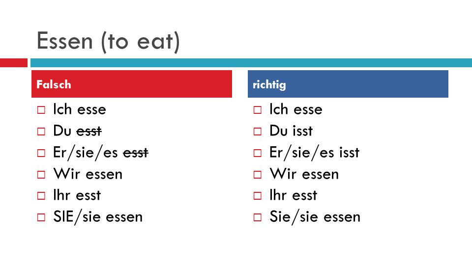 Essen (to eat) Ich esse Du esst Er/sie/es esst Wir essen Ihr esst