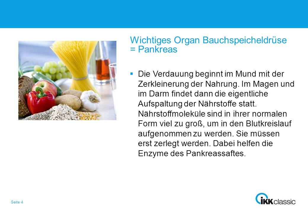 Wichtiges Organ Bauchspeicheldrüse = Pankreas