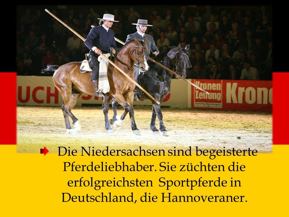 Die Niedersachsen sind begeisterte Pferdeliebhaber