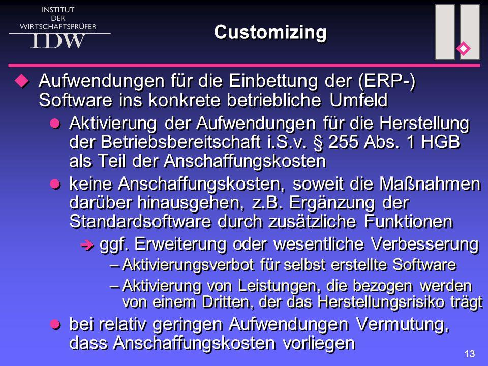 Customizing Aufwendungen für die Einbettung der (ERP-) Software ins konkrete betriebliche Umfeld.