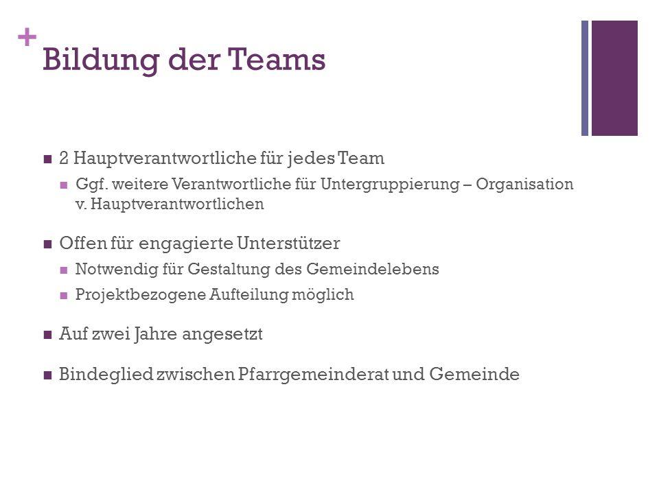 Bildung der Teams 2 Hauptverantwortliche für jedes Team