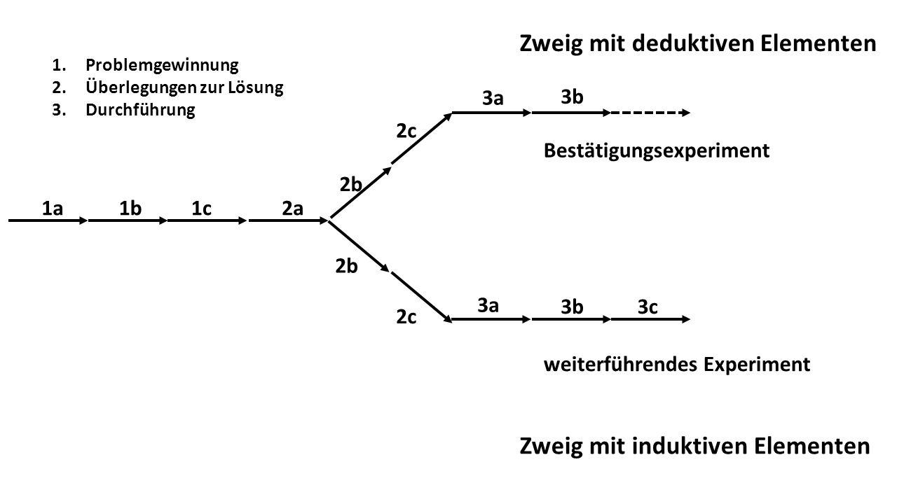 Zweig mit deduktiven Elementen