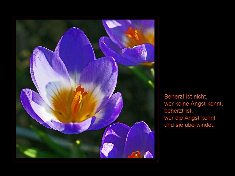 Beherzt ist nicht, wer keine Angst kennt, beherzt ist, wer die Angst kennt und sie überwindet.