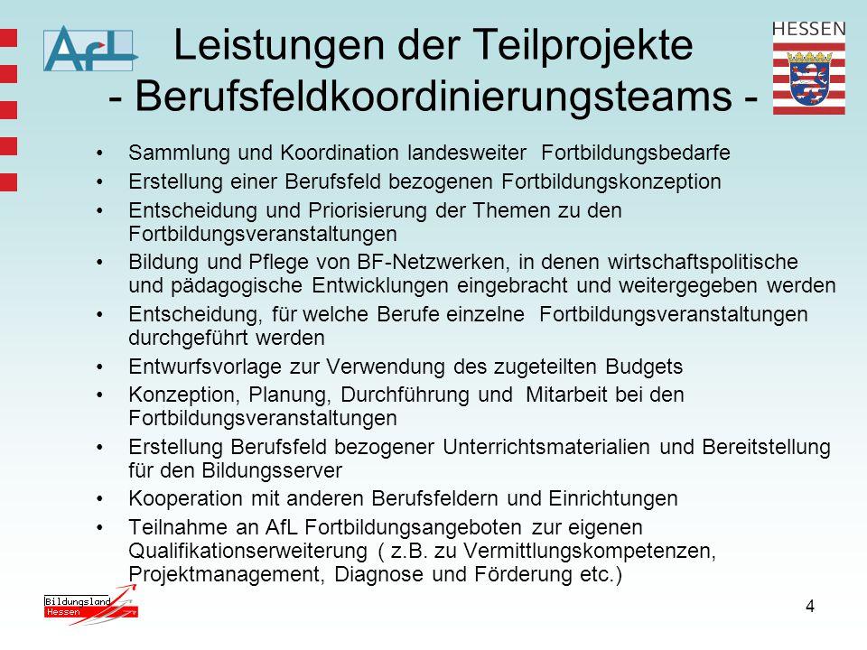Leistungen der Teilprojekte - Berufsfeldkoordinierungsteams -