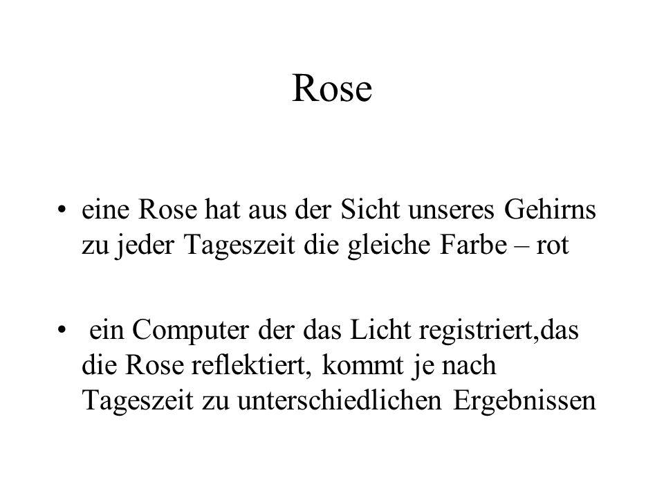 Rose eine Rose hat aus der Sicht unseres Gehirns zu jeder Tageszeit die gleiche Farbe – rot.