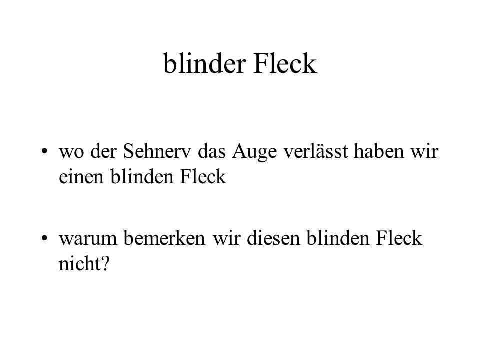 versuch blinder fleck