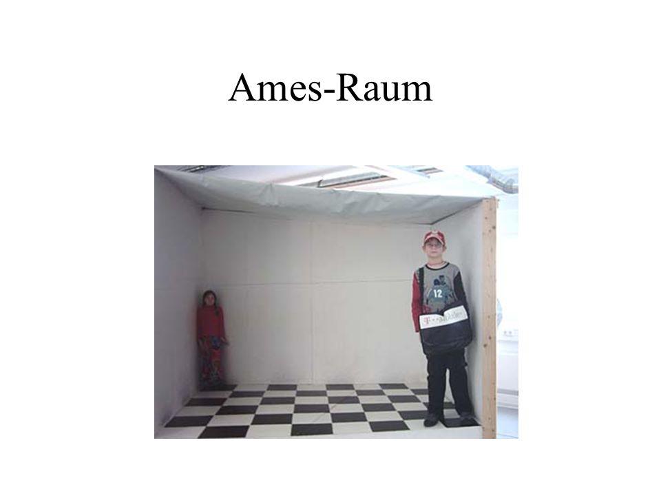 Ames-Raum