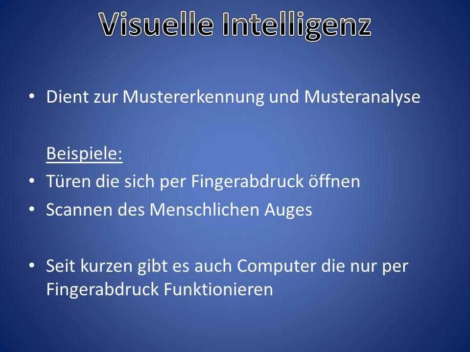 Visuelle Intelligenz Dient zur Mustererkennung und Musteranalyse