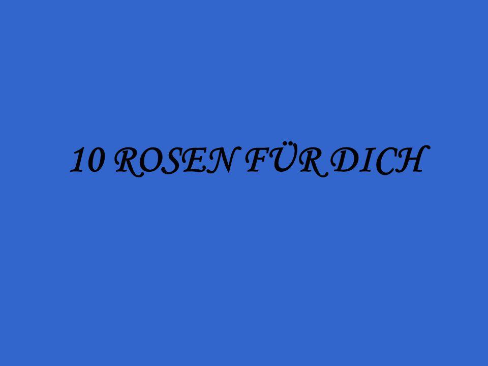 10 ROSEN FÜR DICH
