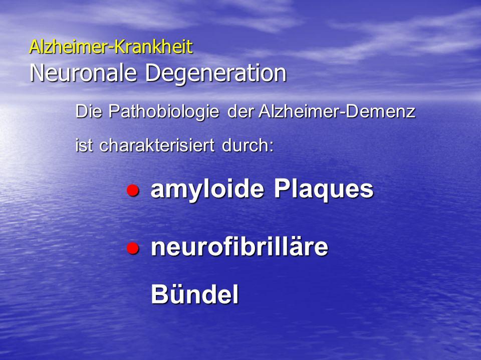 Alzheimer-Krankheit Neuronale Degeneration