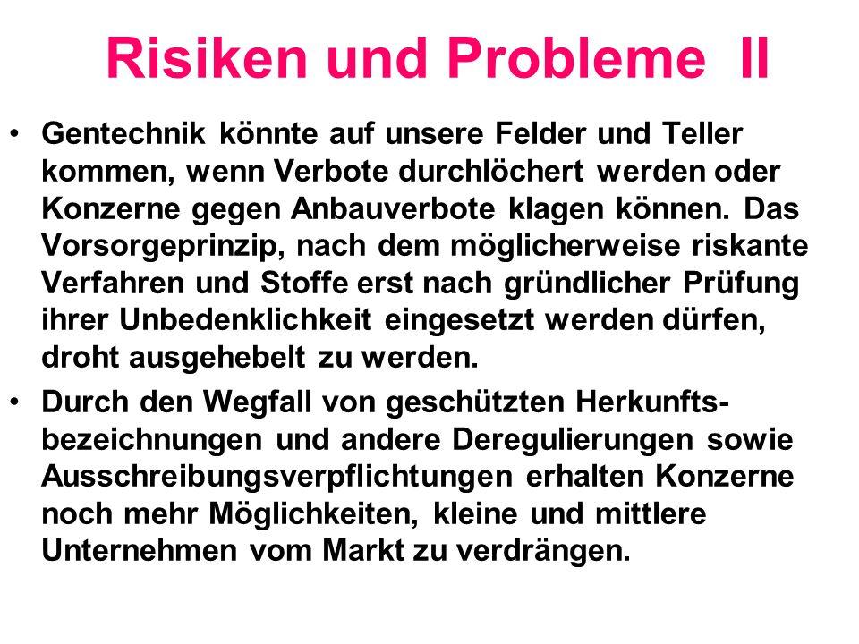 Risiken und Probleme II
